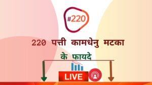 220 पत्ती कामधेनु मटका-220 patti kamdhenu matka
