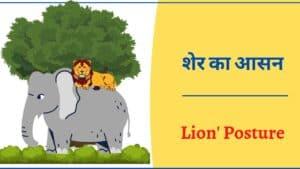 शेर का आसन